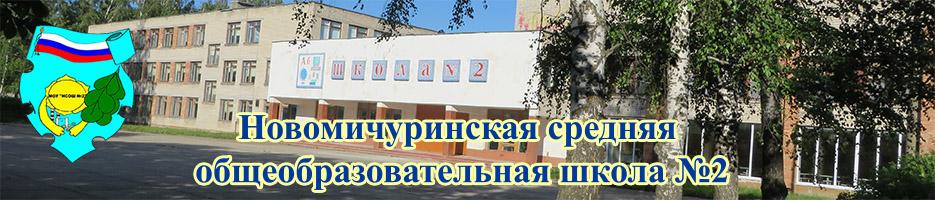 Новомичуринская Школа №2